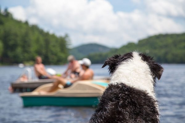 10 Summer Bucket List Items (You May Have Forgotten)